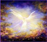 angels abound